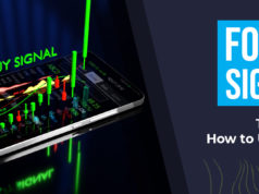 Forex Signal Types and How to Use Them